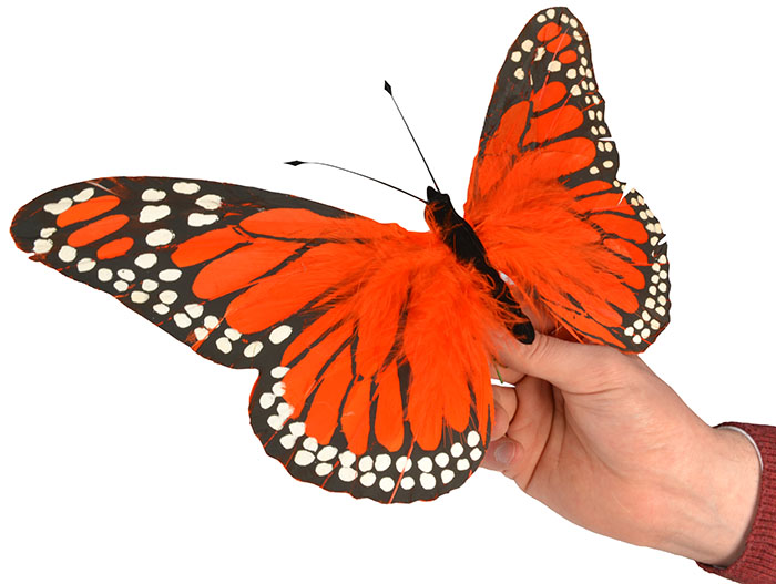 Orange Feather Butterfly - 30cm