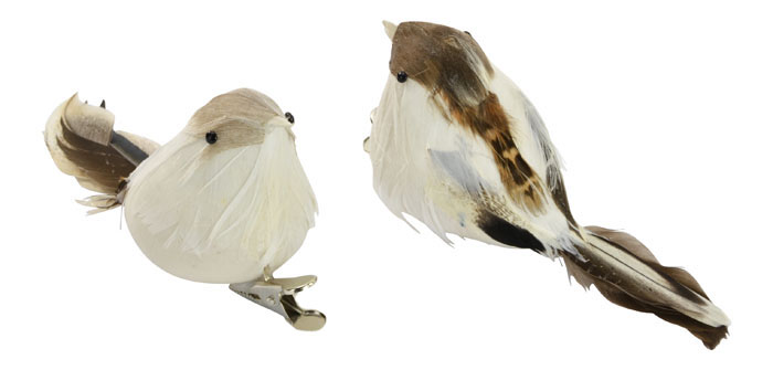 White / Brown Feather Birds - Pk.2