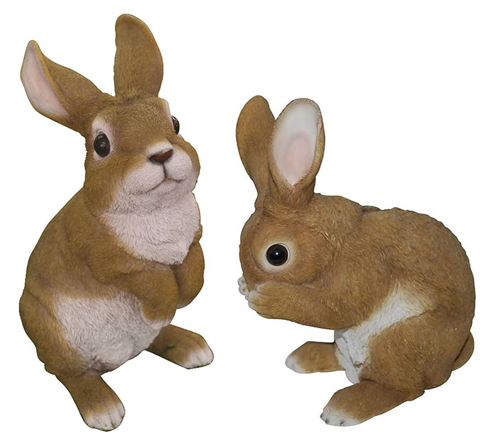 Mr and Mrs Bunny Rabbit