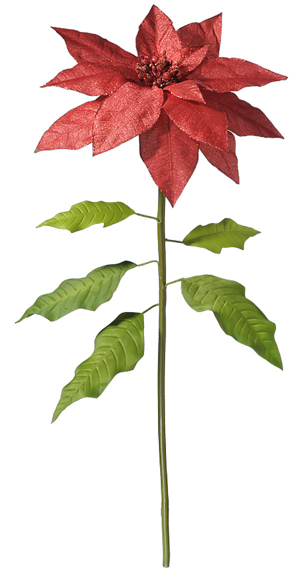 Giant Red Poinsettia