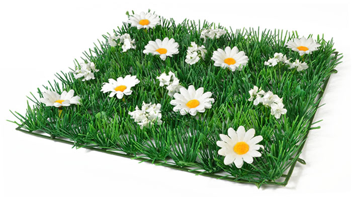 Grass Square with White Daisies