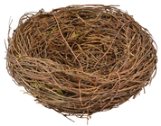 Fake Bird''s Nest - 12cm