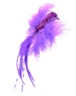 Decorative Feather Bird - Purple