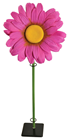 Pink Daisy with Stem - 100 x 40cm