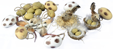 Easter Decoration Set - Natural