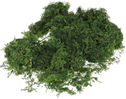 Scatter Moss - Dark Green 50g