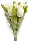 Tulip Bouquet - White