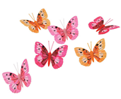 Decorative Butterflies - Pink-Orange, Pk