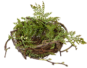 Fake Bird''s Nest with Foliage - 1