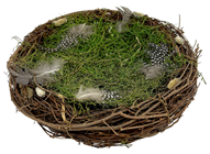 Large Nest with Grass