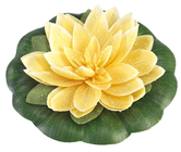 WATERLILY YELLOW