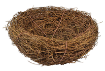 Fake Bird's Nest - 15cm