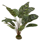 Artificial Calathea Plant on Base