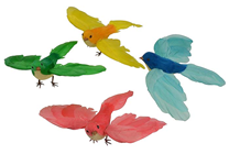 Coloured Birds in Flight - Set of 4