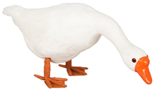 White Goose with Head Down