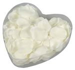 FLOATING SILK CREAM ROSE PETALS