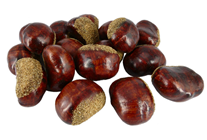 Fake Chestnuts - Pk.18