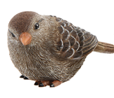 Brown Polyresin Bird