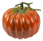 Orange Pumpkin with Stalk - 22cm