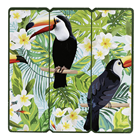 Tropical Toucan Picture