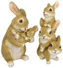 Bunny Rabbit Family - Slight Second