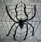Web with Spider 240cm
