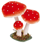 Fly Agaric Toadstool Group - 18cm