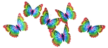 Rainbow Butterflies with Clip - 11cm Pk.6