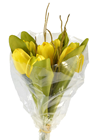 Tulip Bouquet - Yellow