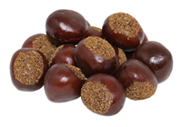 Fake Chestnuts - Pk.16
