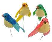 Coloured Birds Perching - Set of 4