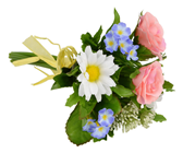 Pastel Flower Mix Posy - 23cm