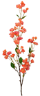 Apple Blossom Branch in Peach - 135cm