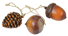 Acorn, Chestnut and Pine Cone Set
