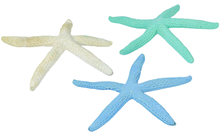 Decorative Starfish - Set of 3